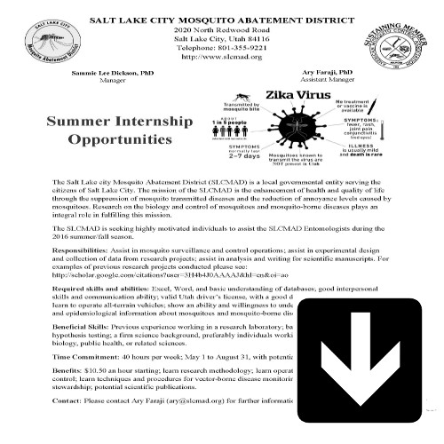 Internship Description